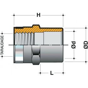 NICOLL Réduction mixte taraudée 1 - ETR40 - PVC anthracite - diamètre 32/40 mm NICOLL ETR40