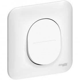 SCHNEIDER Interrupteur 10A + plaque S260202